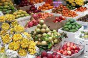 גאווה ישראלית: שווקי האוכל הכי שווים בארץ